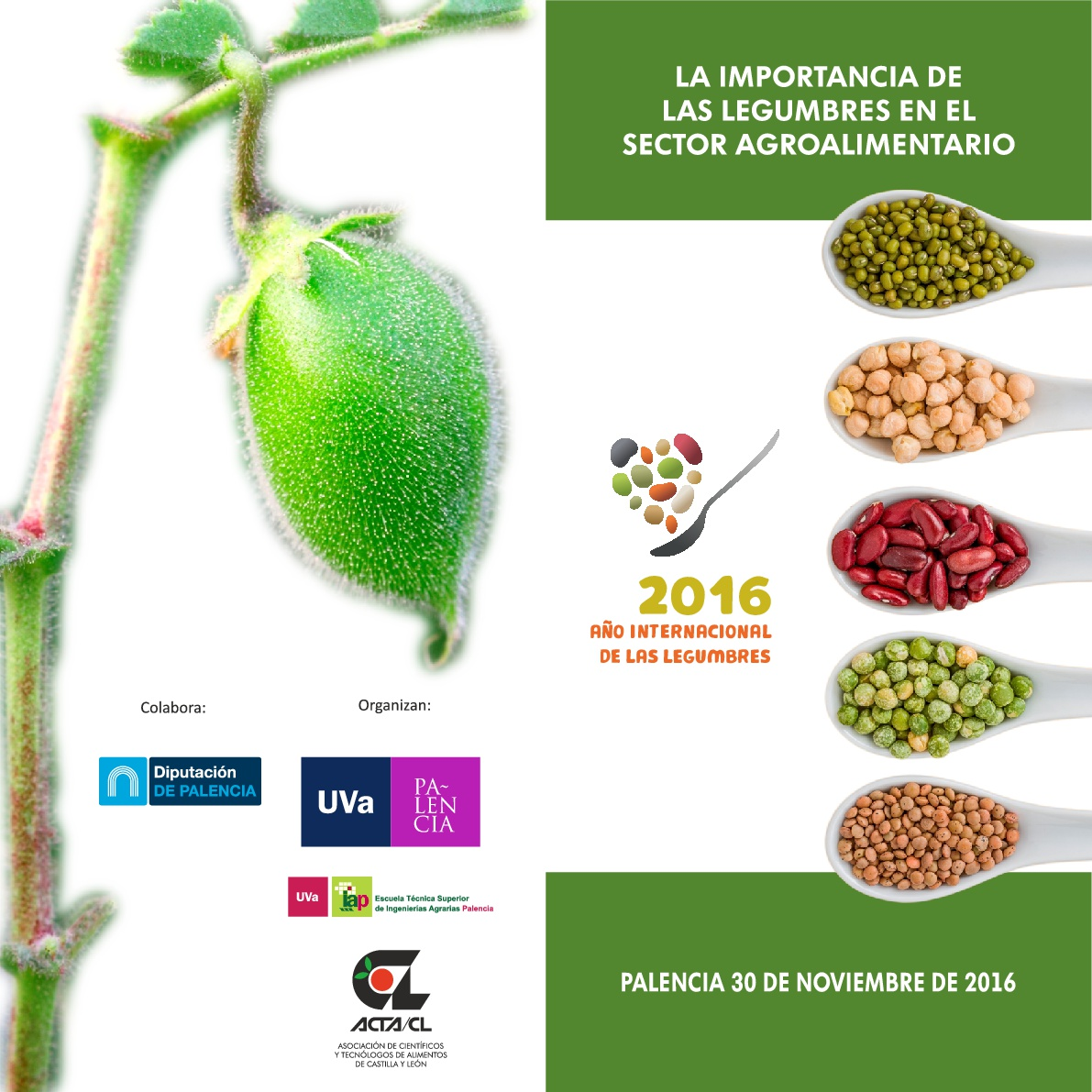 jornada-leguminosas-palencia-2016-001